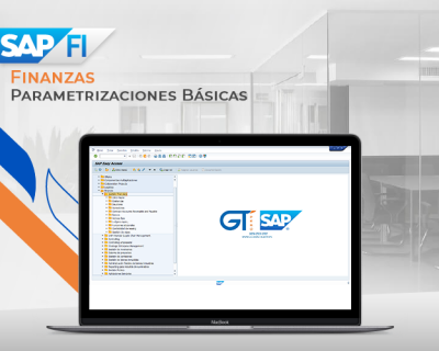 SAP FI  Parametrización y Finanzas