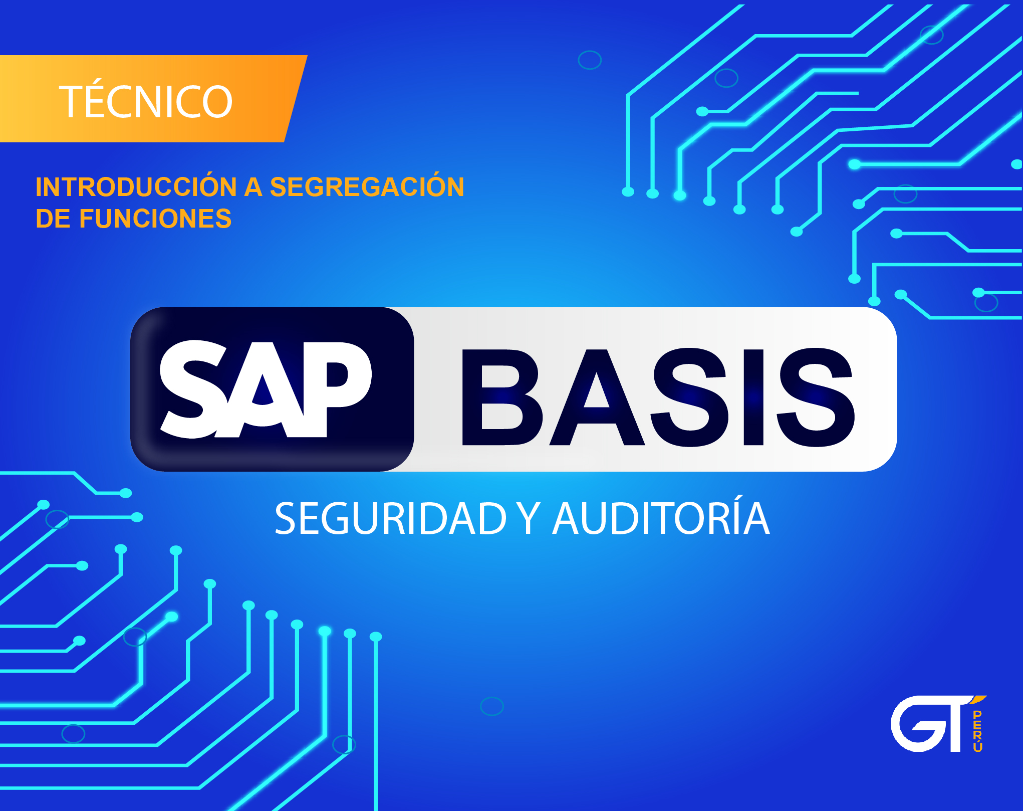 SAP Basis Seguridad y Auditoria