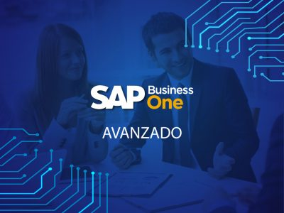 SAP Business One USUARIOS