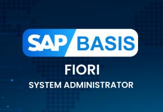 SAP BASIS FIORI