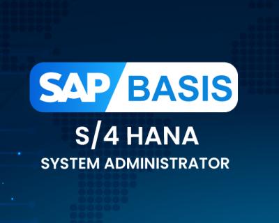 SAP BASIS S4Hana